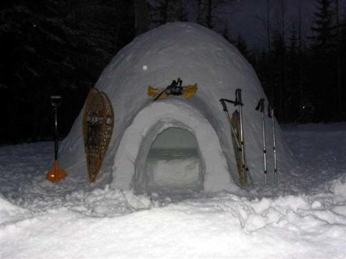 International Igloos